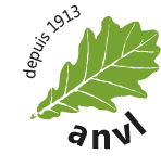 illustration_logo_anvl