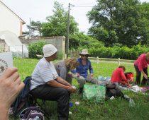 Chantier balsamine juillet 2016 (25)