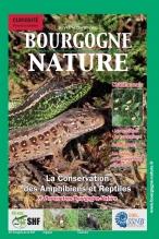 Bourgogne Nature_amphibien