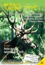 Bourgogne Nature_foret