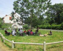 Chantier balsamine juillet 2016 (15)