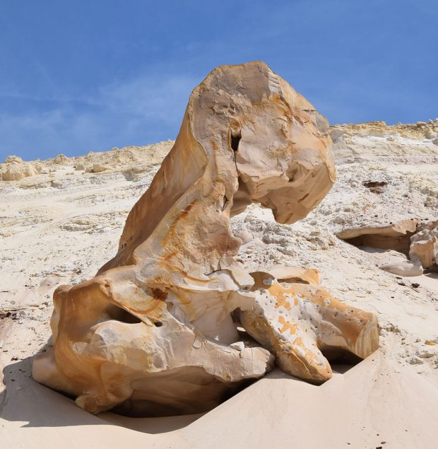 Guide des curiosités géologiques du massif de Fontainebleau