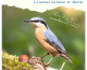 Concours photographique de l'AVEN du Grand-Voyeux