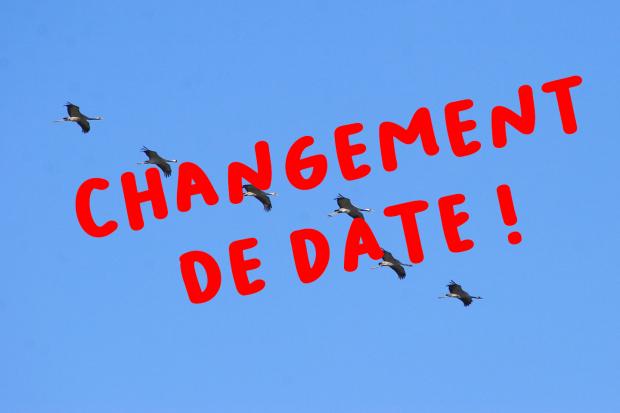 27-28/11 : week-end ornitho «lacs de Champagne»